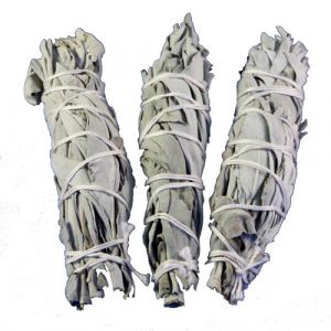 White Sage Smudge (Salvia Apiana) - Medium 6 Inches-SAGE-MED